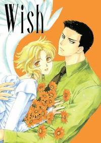 bokomslag Wish