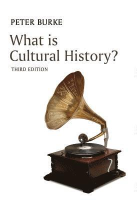 bokomslag What is Cultural History?