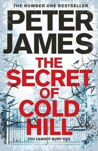 bokomslag The Secret of Cold Hill
