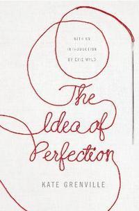 bokomslag The Idea of Perfection