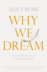 bokomslag Why We Dream: The Science, Creativity and Transformative Power of Dreams