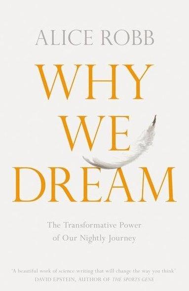 bokomslag Why We Dream: The Science, Creativity and Transformative Power of Dreams