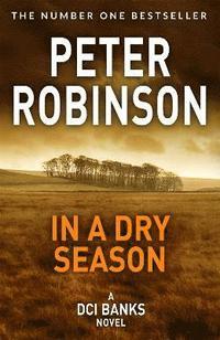 bokomslag In A Dry Season