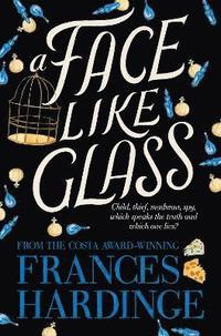 bokomslag A Face Like Glass