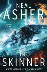 bokomslag The Skinner