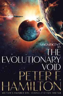 bokomslag The Evolutionary Void