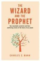 bokomslag Wizard And The Prophet