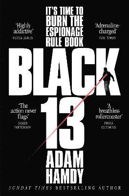 bokomslag Black 13