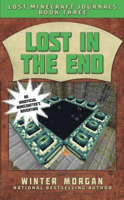 bokomslag Lost in the End