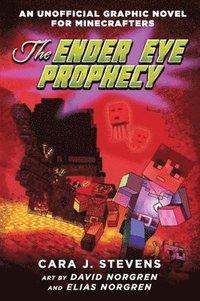 bokomslag The Ender Eye Prophecy
