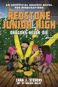 bokomslag Dragons Never Die