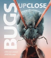 bokomslag Bugs Up Close: A Magnified Look at the Incredible World of Insects