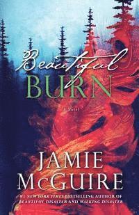 bokomslag Beautiful Burn