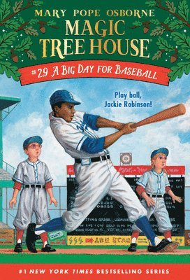 bokomslag A Big Day For Baseball