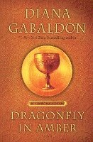 bokomslag Dragonfly in Amber (25th Anniversary Edition)