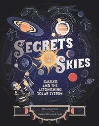 bokomslag Secrets in the Skies