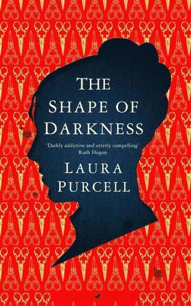 bokomslag The Shape of Darkness
