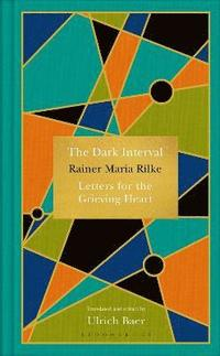 bokomslag The Dark Interval