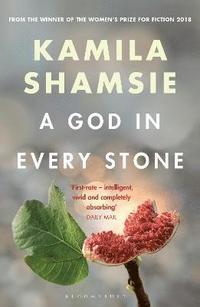 bokomslag A God in Every Stone