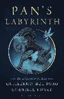 bokomslag Pans Labyrinth The Labyrinth Of The Faun