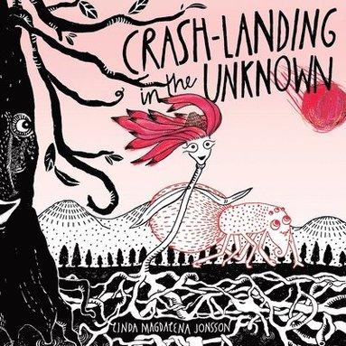bokomslag Crash-Landing in the Unknown