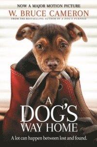 bokomslag A Dog's Way Home