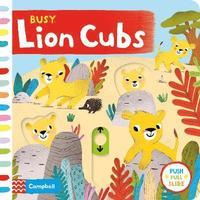 bokomslag Busy Lion Cubs