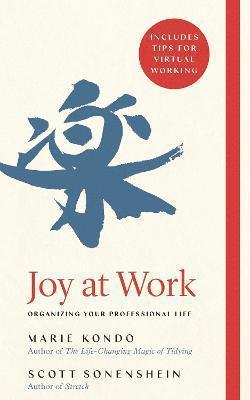 bokomslag Joy at Work