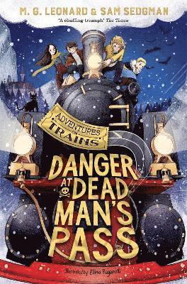 bokomslag Danger at Dead Man's Pass