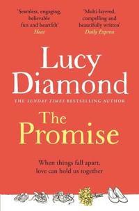 bokomslag The Promise