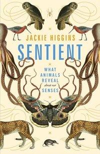 bokomslag Sentient: What Animals Reveal About Our Senses