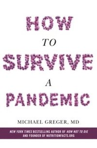 bokomslag How To Survive a Pandemic