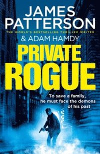 bokomslag Private Rogue