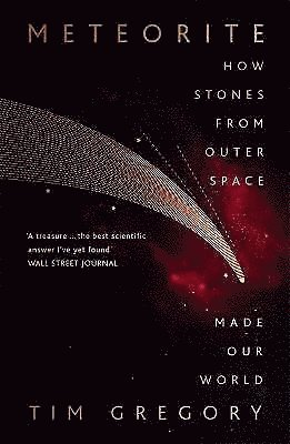 bokomslag Meteorite: How Stones From Outer Space Made Our World