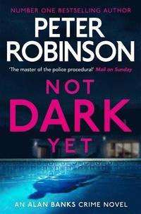 bokomslag Not Dark Yet
