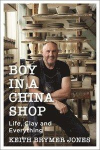 bokomslag Boy in a China Shop