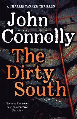 bokomslag The Dirty South