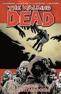 bokomslag Walking dead volume 28