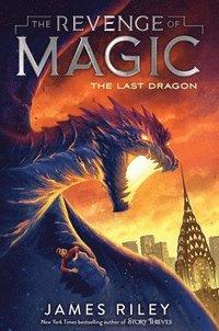 bokomslag The Last Dragon