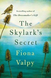bokomslag The Skylark's Secret