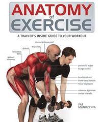 bokomslag Anatomy of Exercise