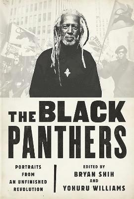 bokomslag The Black Panthers