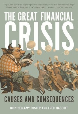 bokomslag The Great Financial Crisis: Causes and Consequences
