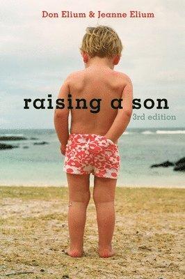 bokomslag Raising a Son
