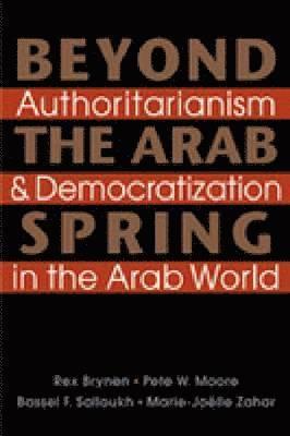 bokomslag Beyond the Arab Spring