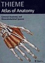 bokomslag Thieme Atlas of Anatomy