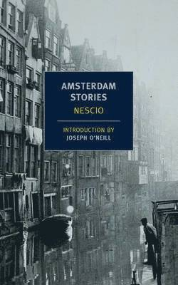 bokomslag Amsterdam Stories