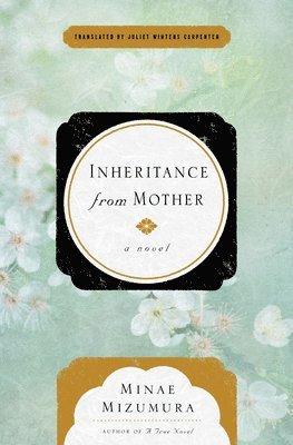bokomslag Inheritance From Mother
