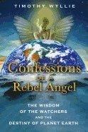 bokomslag Confessions of a Rebel Angel