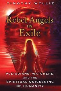 bokomslag Rebel Angels in Exile